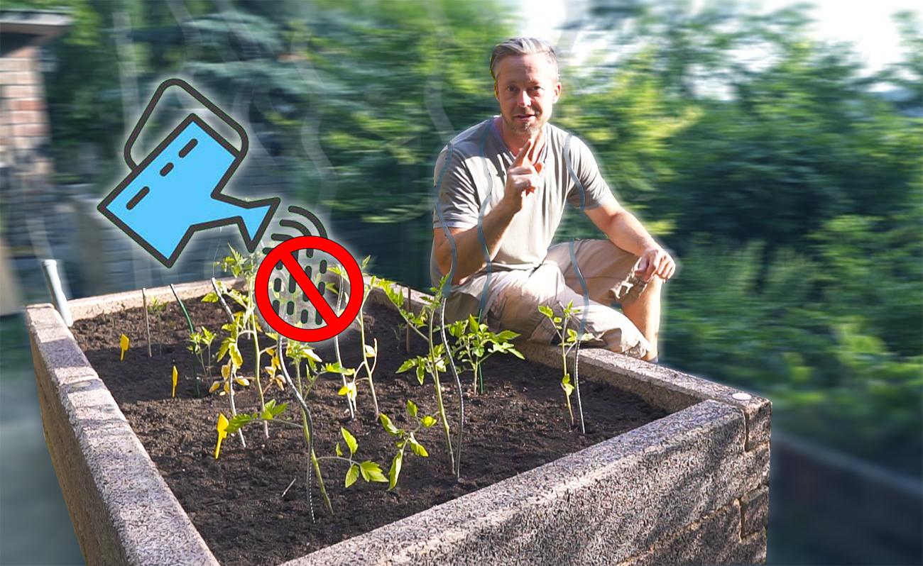 Olyan magaságyást építettem, amit soha nem kell öntözni! - videó