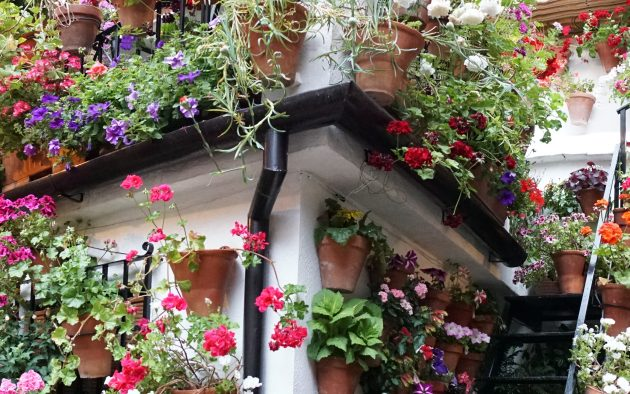 Córdoba, andalúz életérzés, virágfesztivál, patiofesztivál, patio, díszudvar
