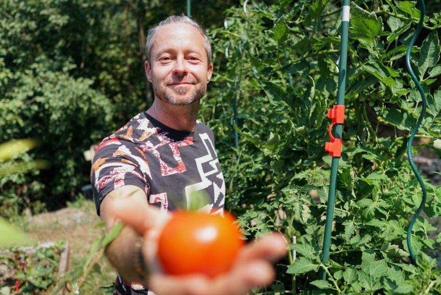 5 tuti tipp az őszi paradicsom terméséért - videó