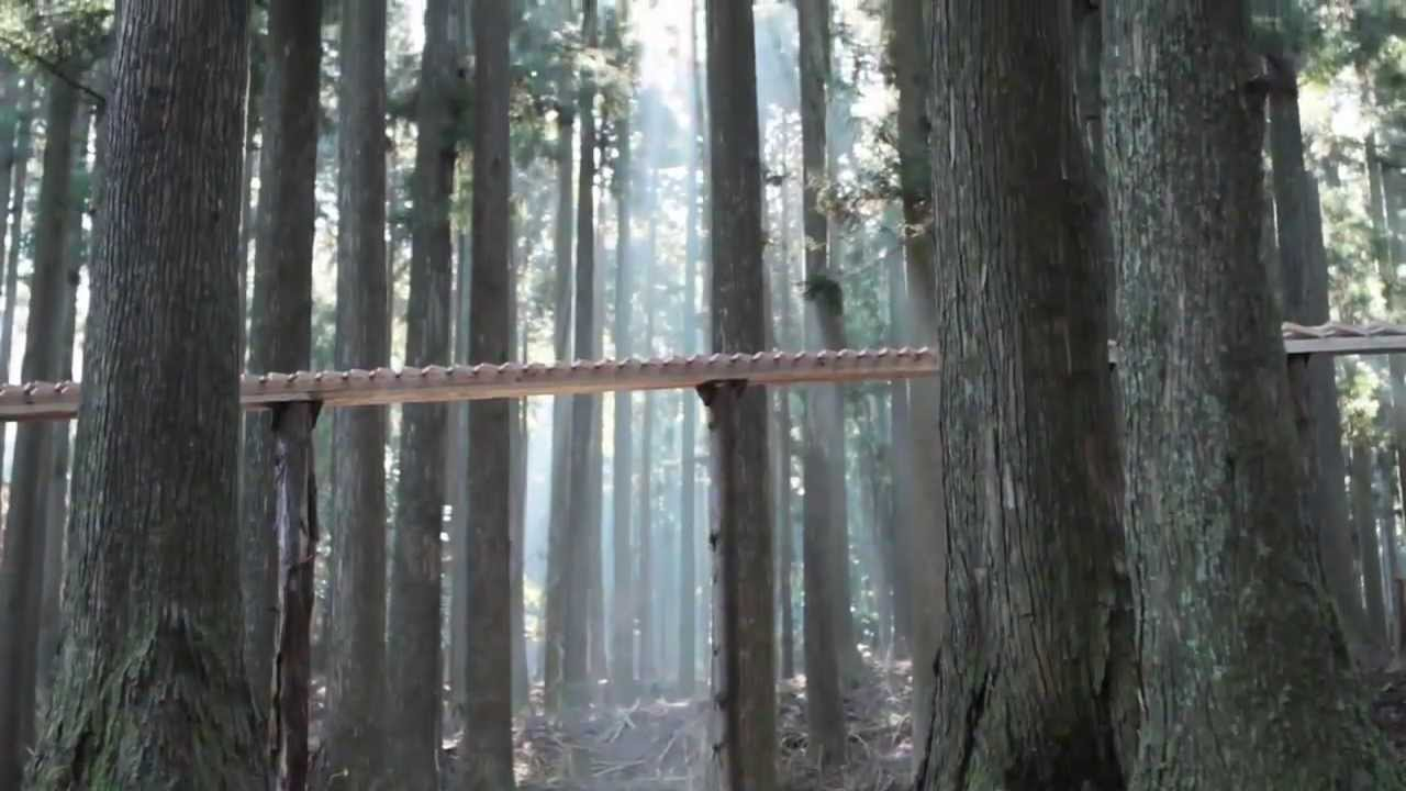 Bach 147. kantátája szól az önműködő erdei xilofonon