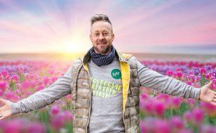 tulipán, őszi ültetés