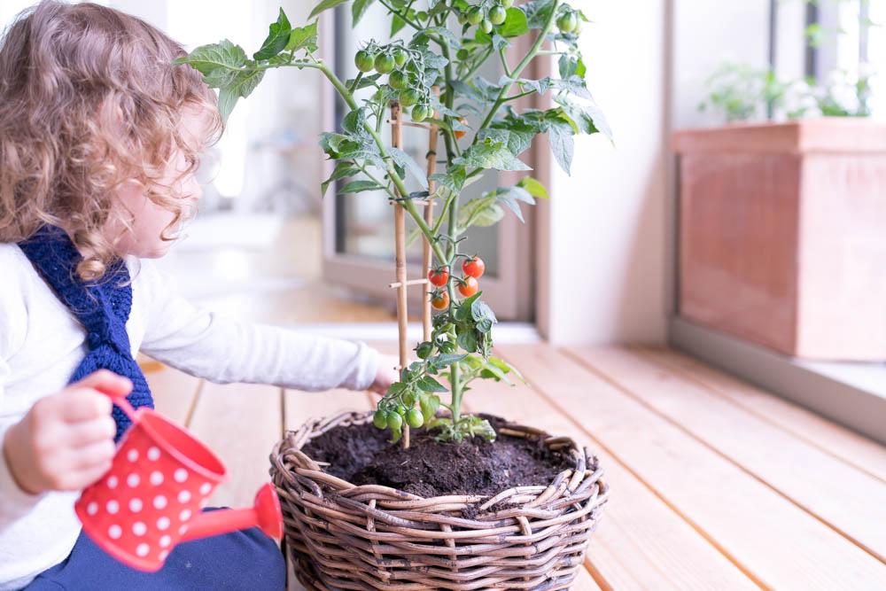 Téli beltéri kertészkedés gyerekekkel