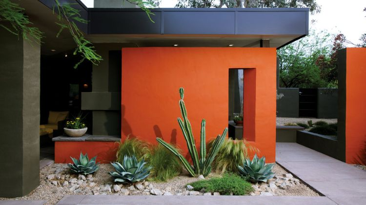 20 minimalista, modern, könnyen fenntartható kaktuszkert