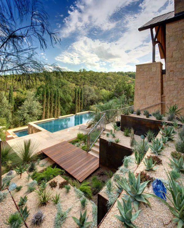 kaktusz, kaktuszkert, szárazkert