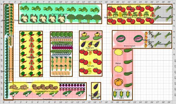 veteményes, tervezés, zöldség