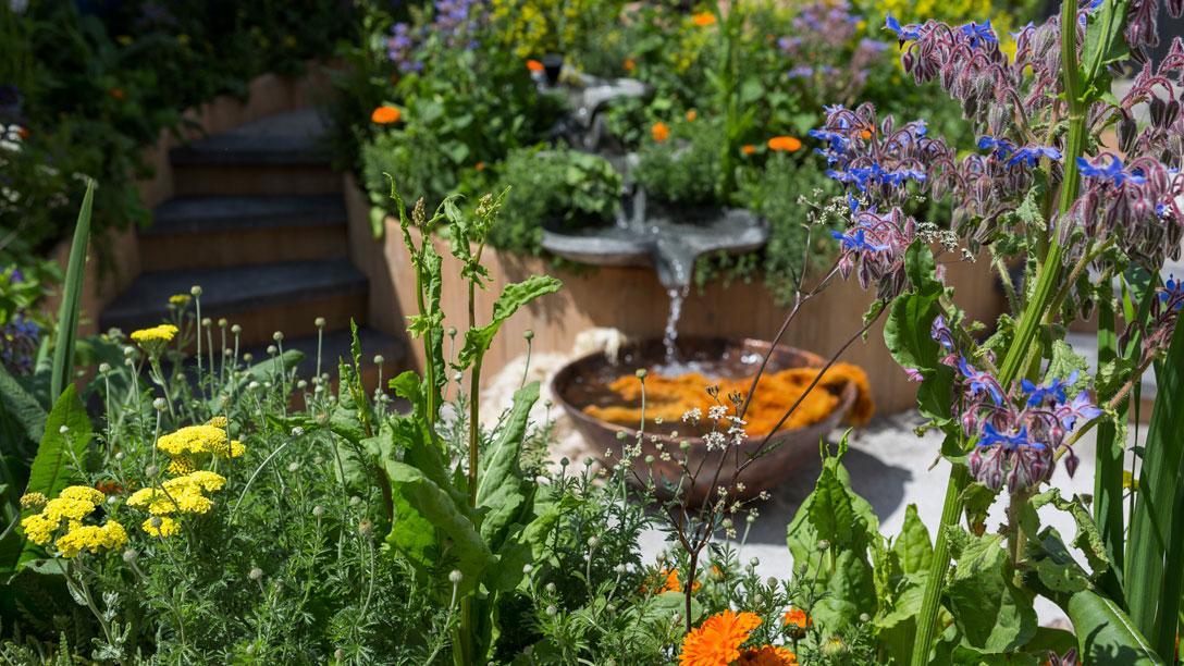 Így állj neki a kerttervezésnek! -Első lépések