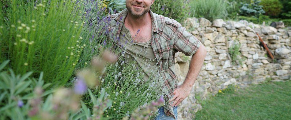 mediterrán növény, tavasz, metszés