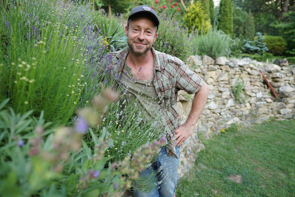 Mikor metszheted tavasszal a mediterrán növényeket? - videó