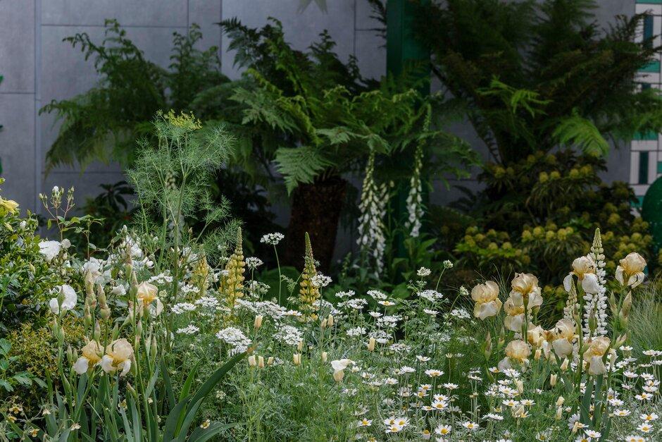 2019 Chelsea Virágkiállítás legszebb kertjei