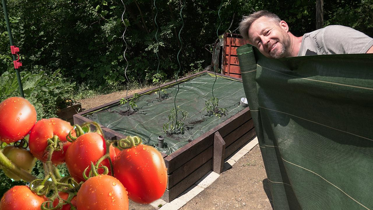 Agroszövet, csodafegyver a hőség ellen - videó