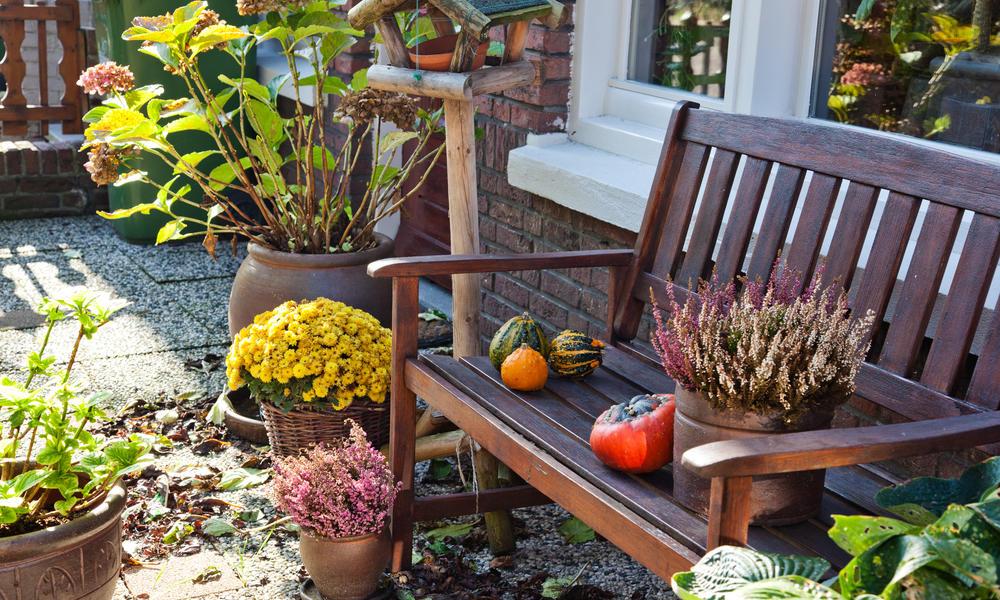 Kihagyhatatlan kerti teendők októberre