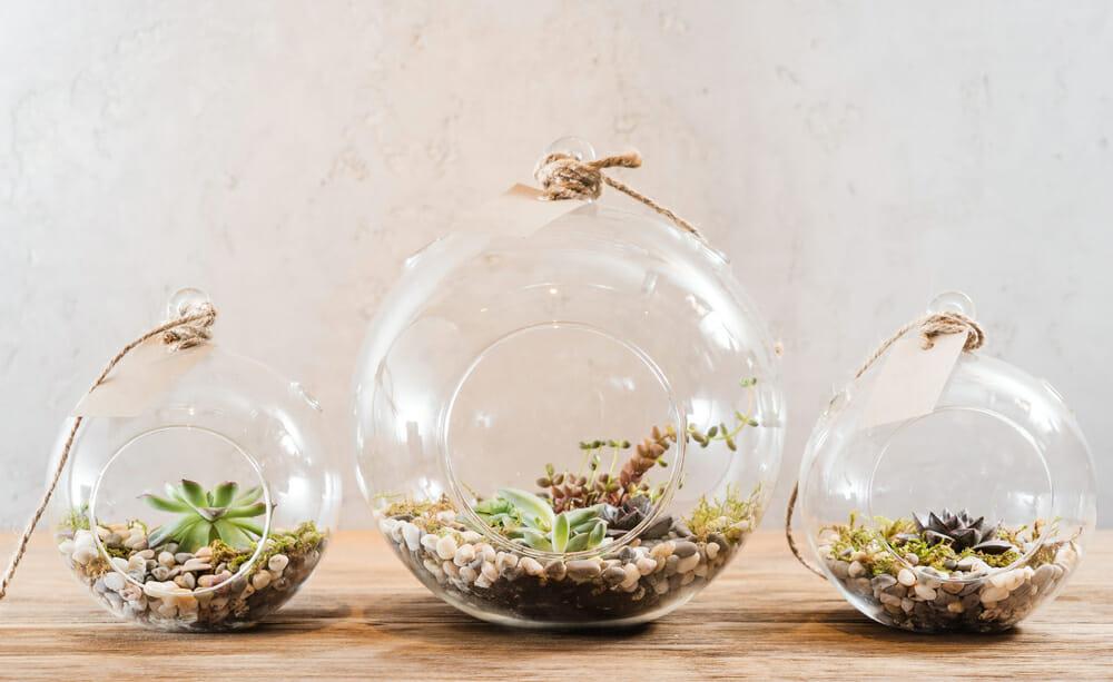 10 beltéri kertészkedési projekt a téli depresszió ellen