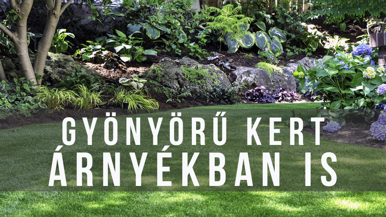 Szép, színes évelőágyás árnyékos kertrészbe - videó