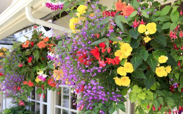 nyári virágláda