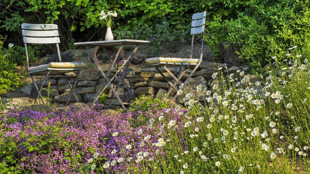 Természetes kert - szelíd növényvédelem
