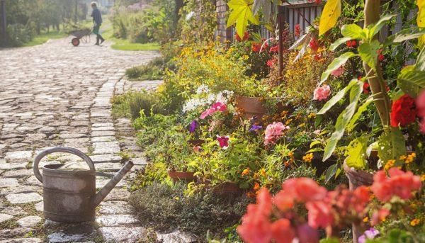 előkert virágokkal
