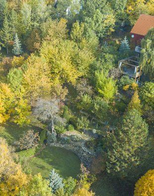 késő őszi kerti tennivalók