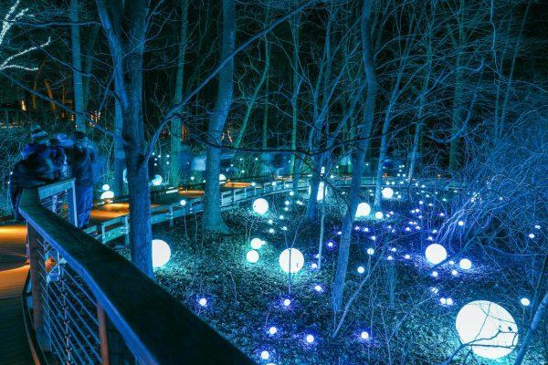 longwood botanikus kert karácsony