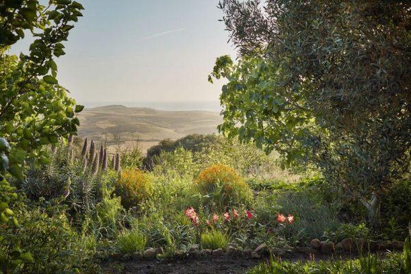 umberto pasti marokkói kertje