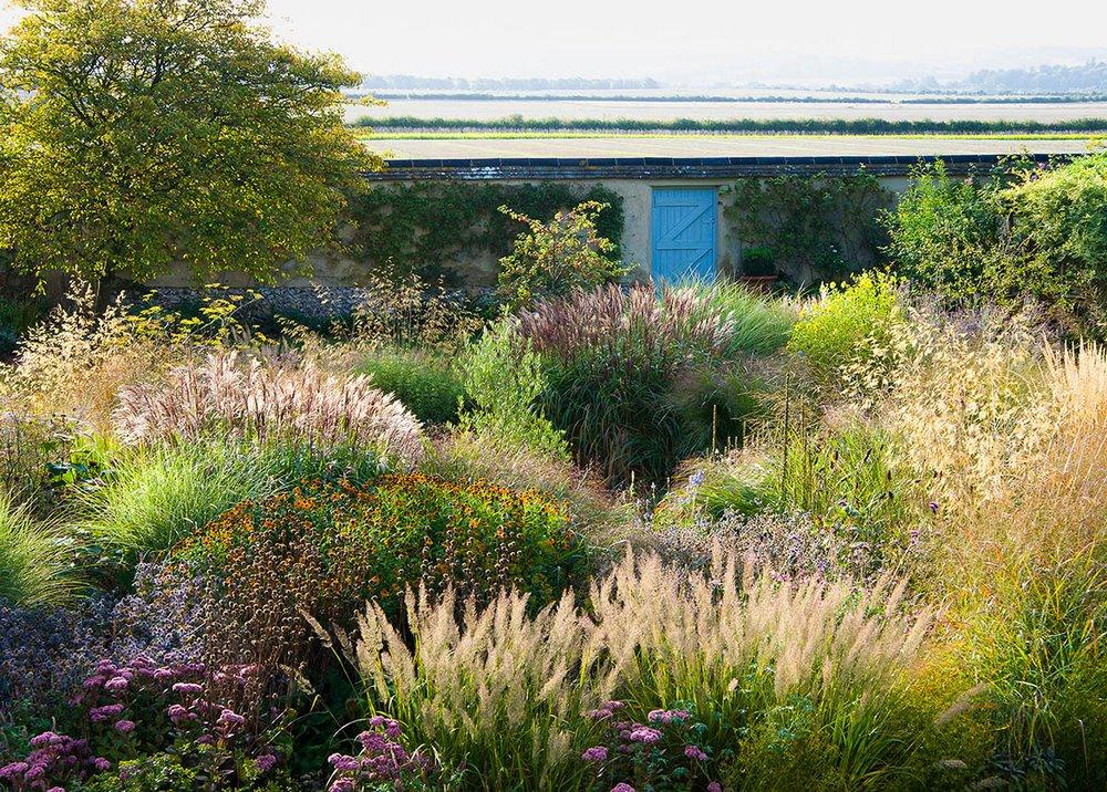 Hampshire garden Carole Drake kertfotó
