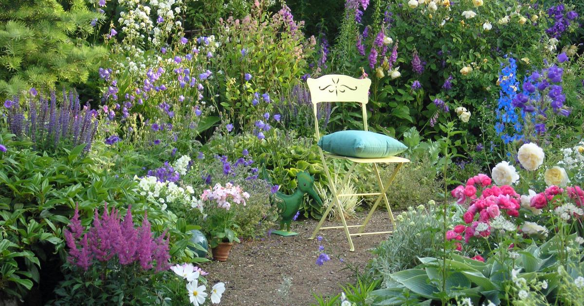 Spórolós, avagy pénztárcabarát  növények