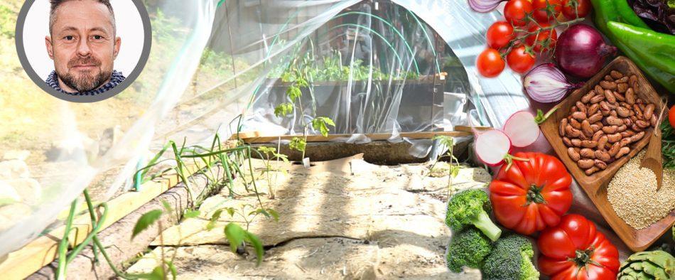 bőséges zöldség termés