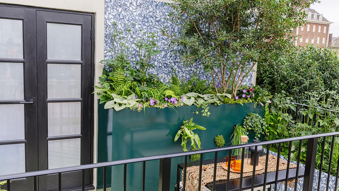 Zöld oázis a balkonon. 5 inspiráló balkonkert a Chelsea-i Virágkiálltásról